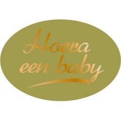 Etiket Geboorte goud, ovaal
